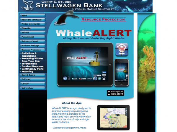 Stellwagen.Bank National Marine Sanctuary
