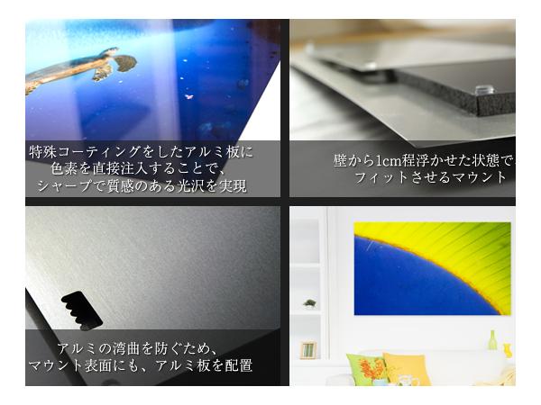 zen_4_new