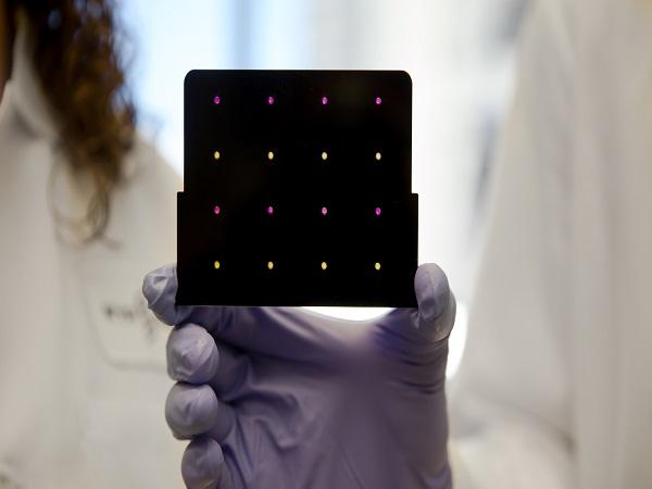 MIT_Zika paper-based sonsor