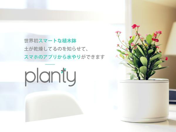 planty_1