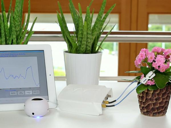 世界初の植物専用ウェアラブルデバイス「Phytl Signs」