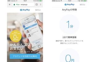 anypay - 1