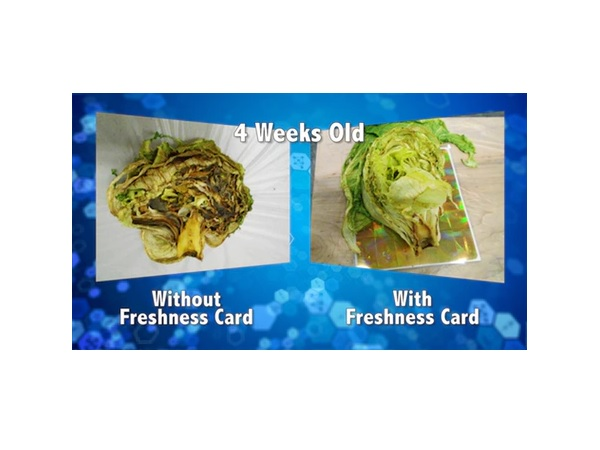 FoodFreshnessCard3