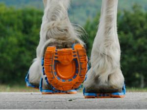tech-1012-horse1
