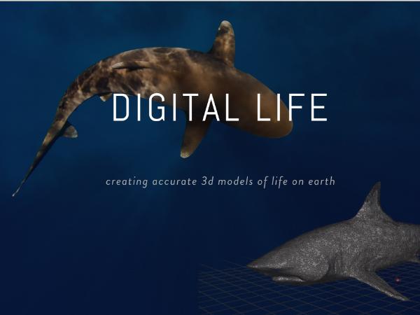 地球上の生物を3Dモデル化するプロジェクト「Digital Life」