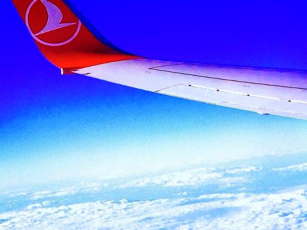 機内WiFiへの対応がすすむ航空会社