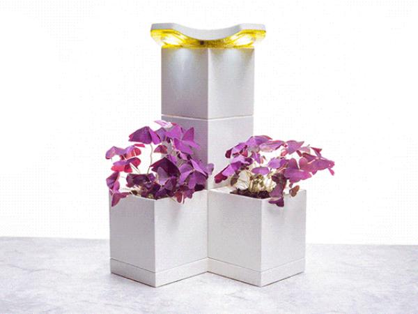 「LED Grow Lamp」と「Base Growing Pot」を組み合わせた例