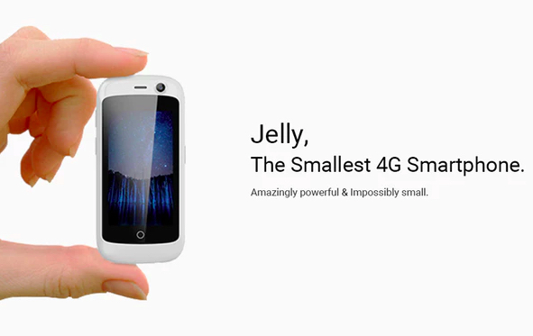 Jelly-1