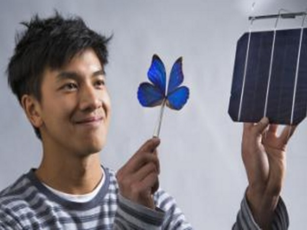 AustralianNationalUniversitysolar