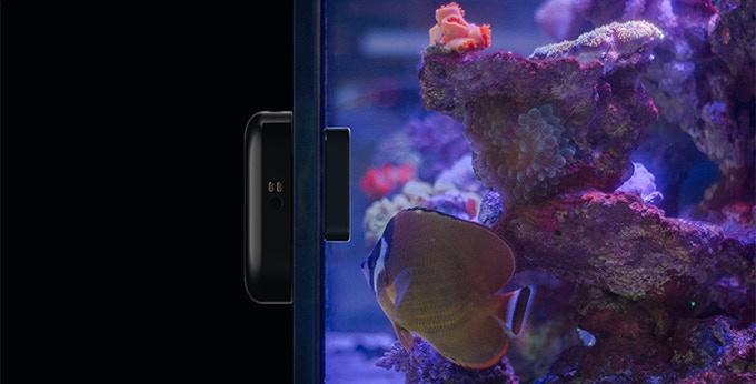 Roomba moai for Fish tank camera