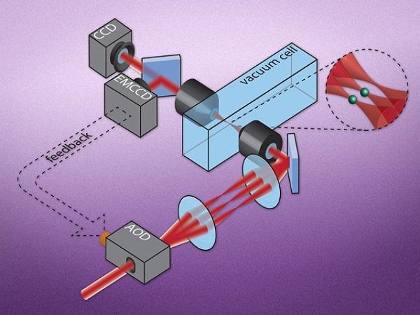 MITとハーバード大が51個の量子...