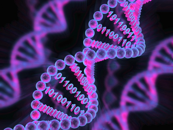 DNAを記憶媒体にする技術が進歩...