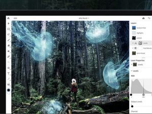 AdobeのPhotoshopがiPadで使えるように! 2019年にアプリをリリースへ