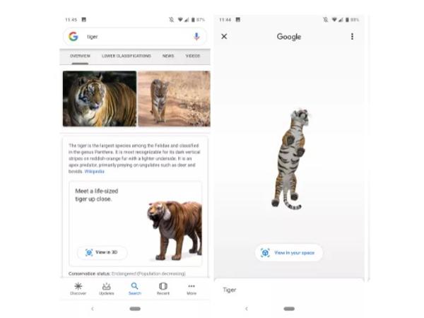 グーグル 3d 動物
