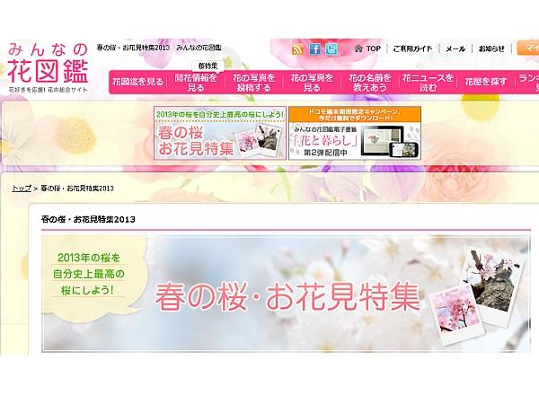みんなの花図鑑 桜特集