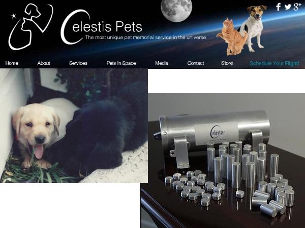 CelestisPets2