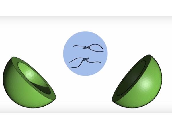 BioCarbon3