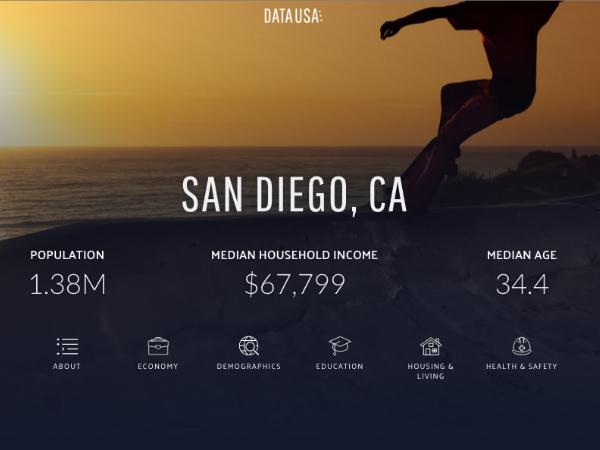 「Data USA」のデータ表示画面