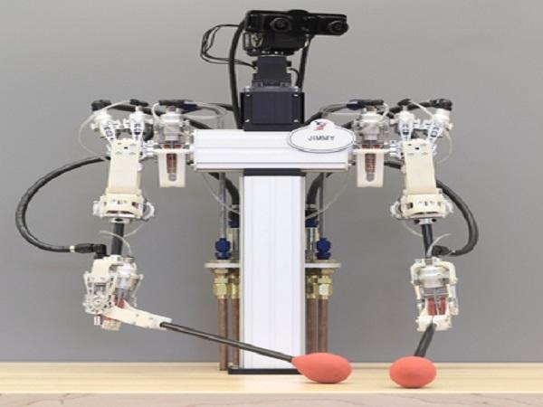 Disney telepresence robot 1