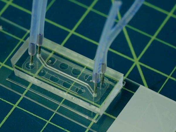 Harvard smoking machine chip