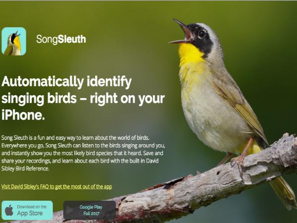 北米200種の鳥を鳴き声から検索できる「Song Sleuth」