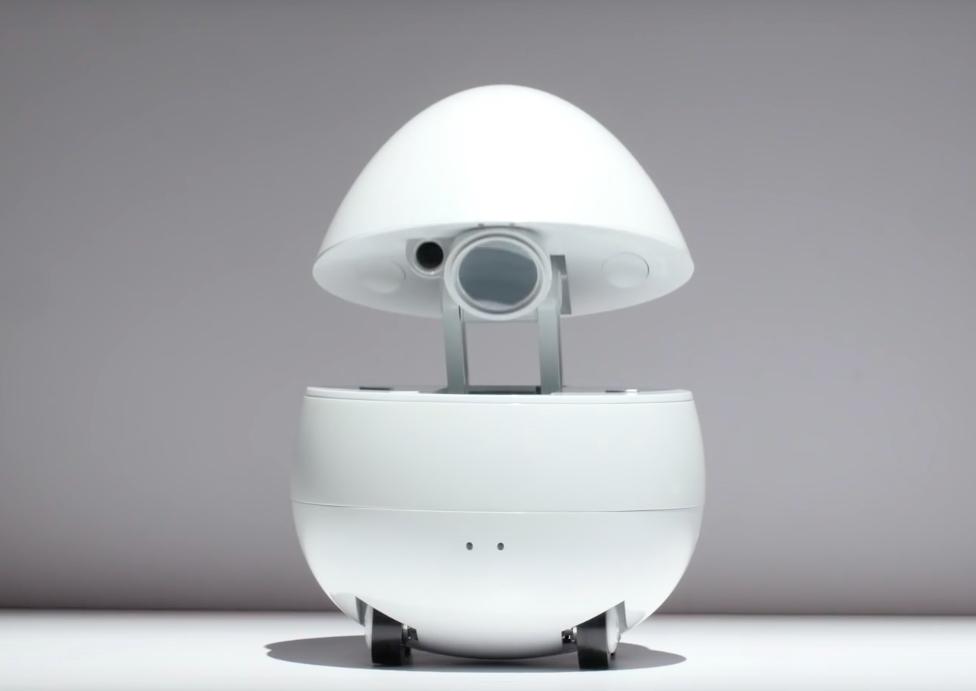Desktop-Companion-Robot1