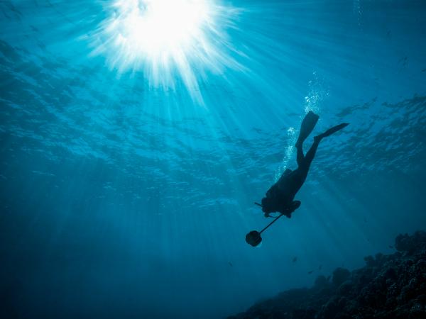 360度撮影できる水中カメラ「Boxfish 360」