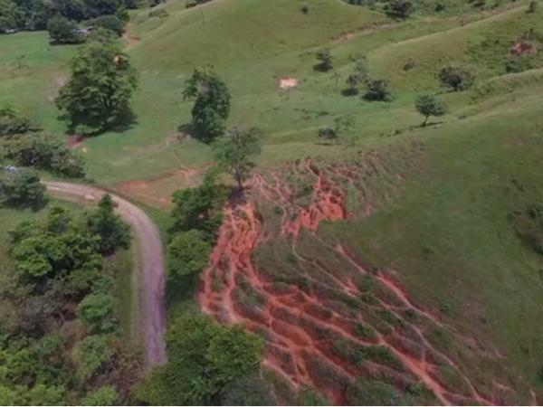 アマゾン熱帯雨林の空撮画像