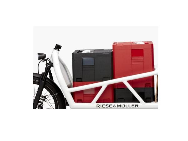 RieseMuller2